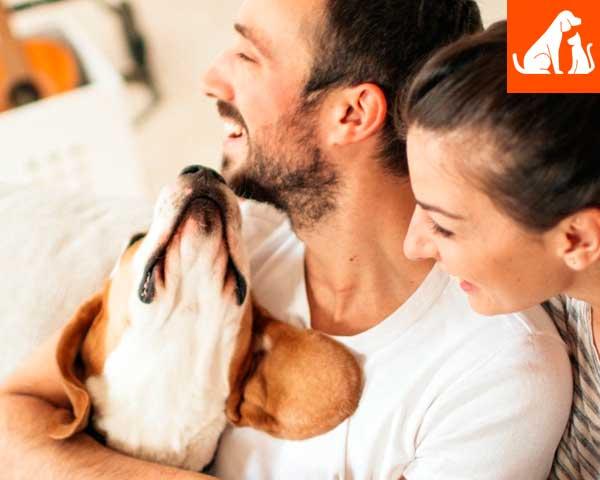 Preventivo UnipolSai Cane & Gatto