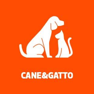 ico animali