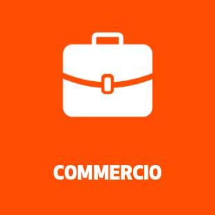 Assicurazione Commercio&Servizi